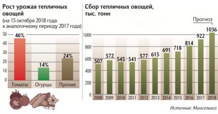 Салатный рекорд: Минсельхоз ждет урожай тепличных овощей в 1 млн т