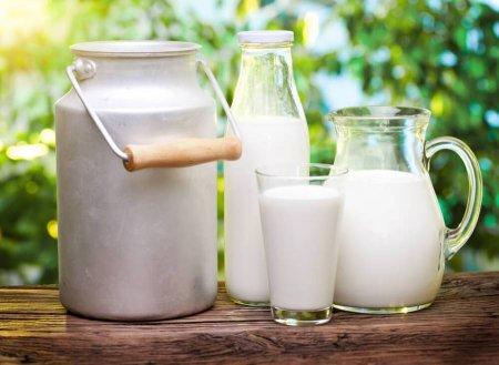 Маркировка молочной продукции будет обязательной